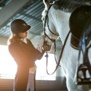 Pferdehaftpflicht Pferdehalterhaftpflicht Christian Willmann Versicherungsmakler Mannheim