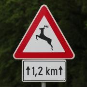 Erweiterte Wildschadenklausel Wildwechsel Verkehrsschld KFZ Christian Willmann Versicherungsmakler Mannheim Rhein-Neckar Heidelberg Ludwigshafen